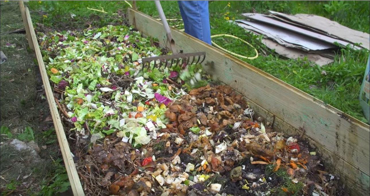 Peluches de legumes sur jardin en lasagne