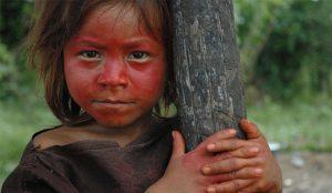 enfant-indien-qui tient-arbre
